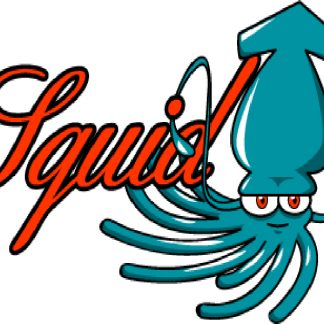 Squid Proxies Logo